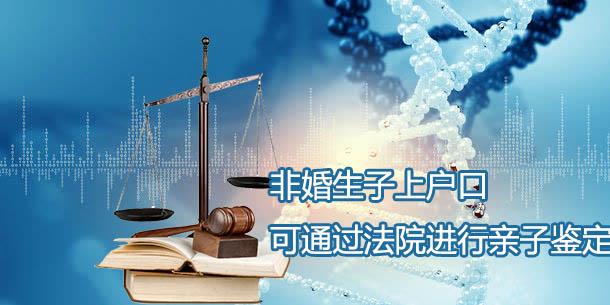 非婚生子无法上户,可通过法院申请亲子鉴定